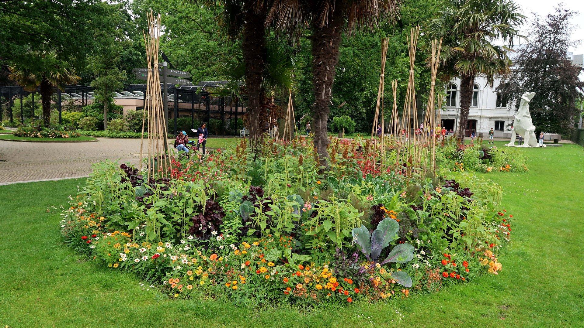 De eetbare tuin for Tuinontwerp eetbare tuin